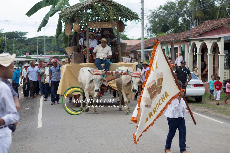 Desfile de carreta 2015-98