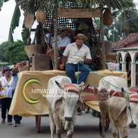 Desfile de carreta 2015-100