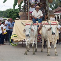 Desfile de carreta 2015-103