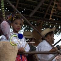 Desfile de carreta 2015-111