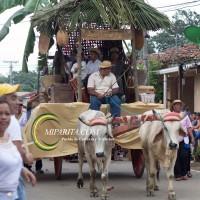 Desfile de carreta 2015-115