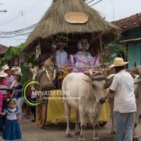 Desfile de carreta 2015-68