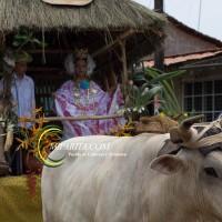 Desfile de carreta 2015-69