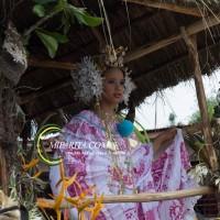 Desfile de carreta 2015-71