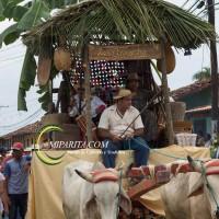 Desfile de carreta 2015-78