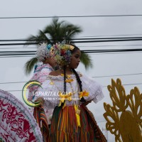 Desfile de carreta 2015-83