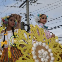 Desfile de carreta 2015-88