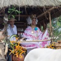 Desfile de carreta 2015-93