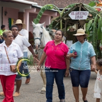 Desfile de carreta 2015-42
